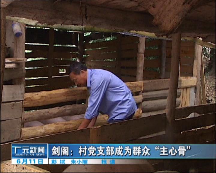 """村党zhi部成为qunzhong""""主心骨"""""""